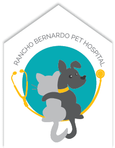 Rancho Bernardo Pet Hospital - Veterinarian